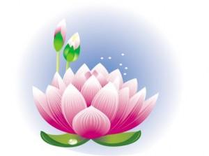 Spring (primavara) Lotus_10