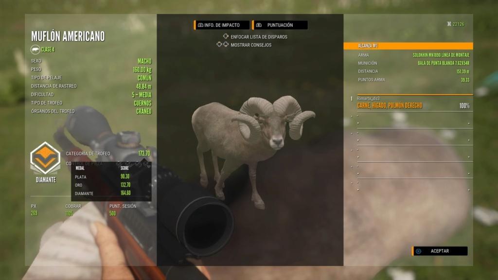 TOP 5 BIGHORN SHEEP 173_7010