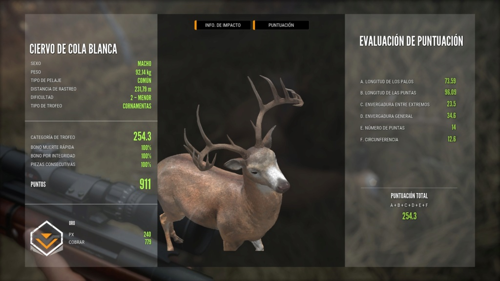 TOP 5 WHITETAIL 51879017