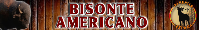 TOP 5 BISONTE AMERICANO Bisont10