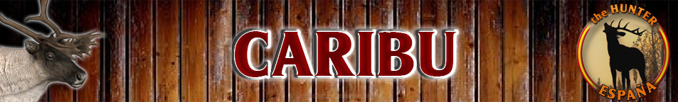 TOP 5 CARIBU Caribu10