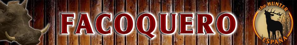 TOP 5 FACOQUERO Facoqu10