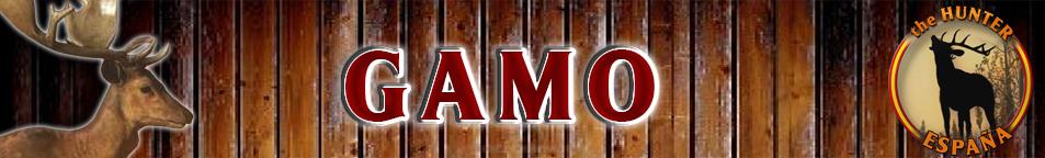 TOP 5 GAMO Gamo_b10