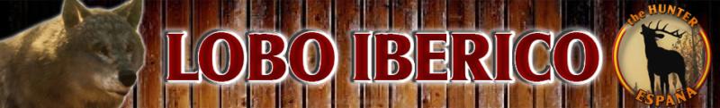 TOP 5 LOBO IBERICO Lobo_i10