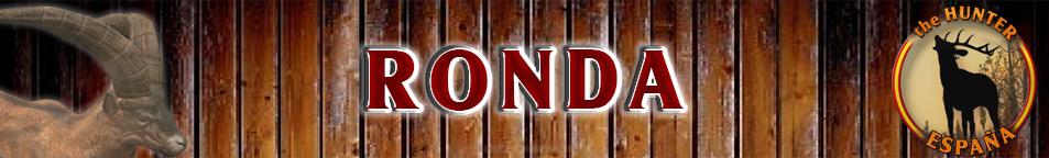 TOP 5 MACHO MONTES RONDA Macho_17