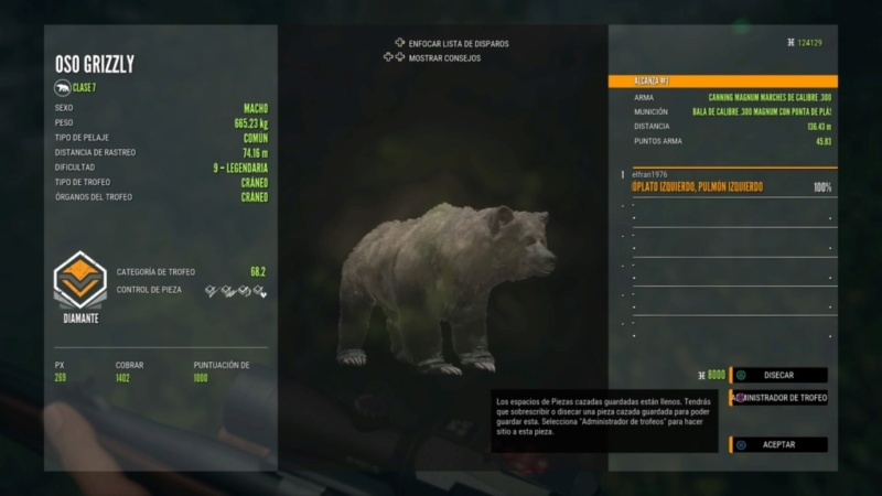 TOP 5 OSO GRIZZLY Oso_el10