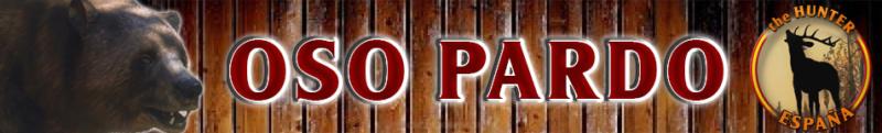 TOP 5 OSO PARDO Oso_pa10
