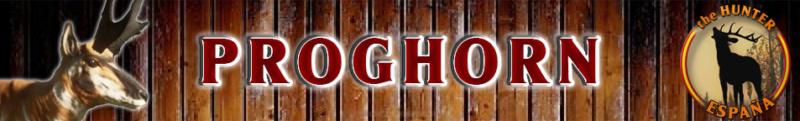 TOP 5 PROGHORN Progho11