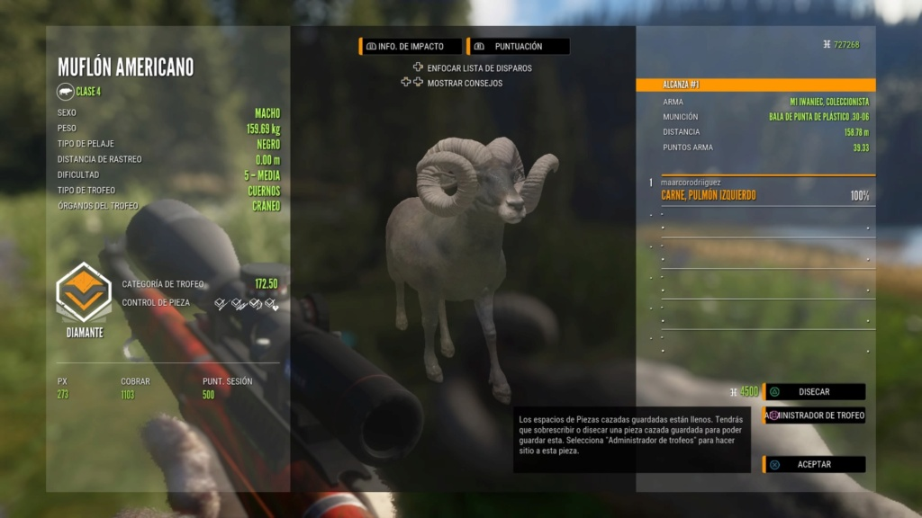 TOP 5 BIGHORN SHEEP - Página 2 Ps_app10