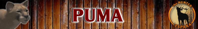 TOP 5 PUMA Puma_b10
