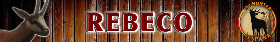TOP 5 REBECO Rebeco10