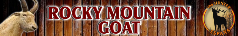 TOP 5 ROCKY MOUNTAIN GOAT Rocky_12