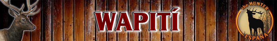 TOP 5 ELK /WAPITI Wapiti10
