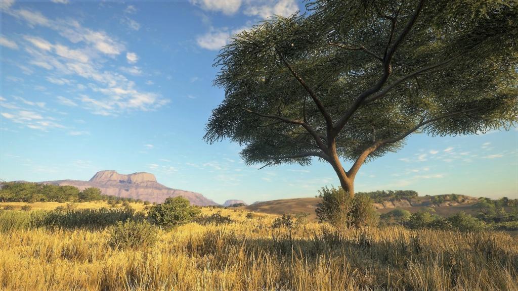 Vurhonnga-Savanna 20180814