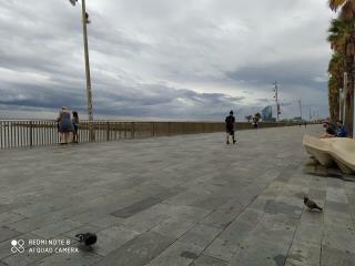Imagines de Barcelona  15986912