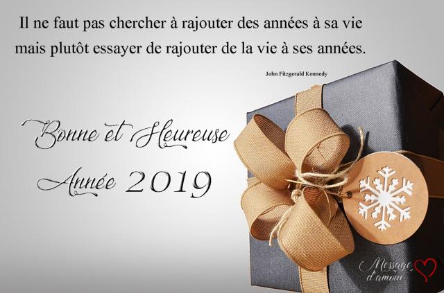 BONNE ANNEE 2019 A TOUS Carte-12