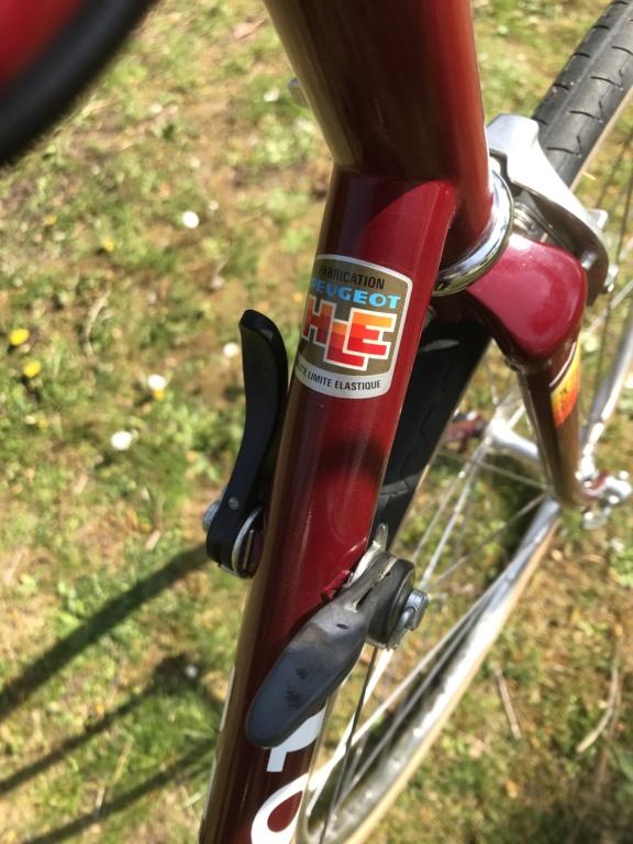 Peugeot PHE 10 Tourmalet Img_5414