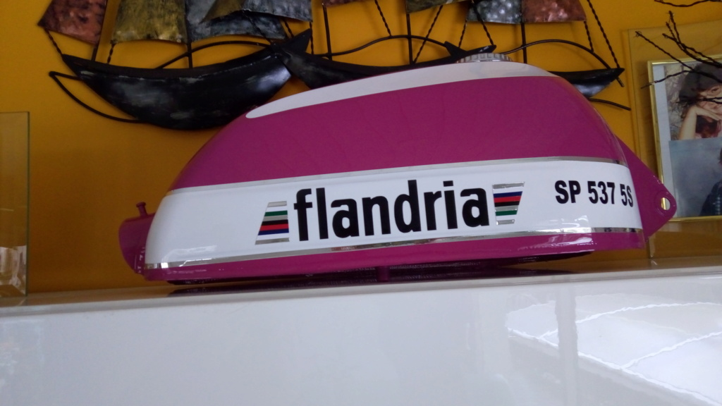 Restauration Flandria Sp 737 P_202073