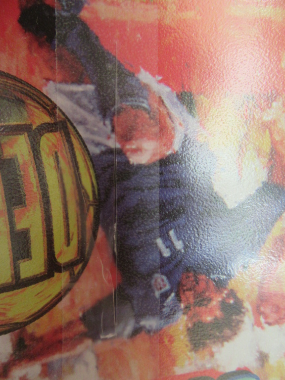 [VDS] Sega Nomad Img_0214