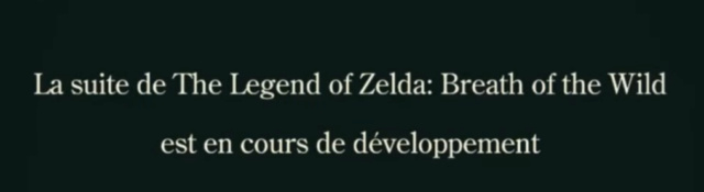 [SWITCH] The Legend of Zelda : Breath of the Wild 2 Sans_t11