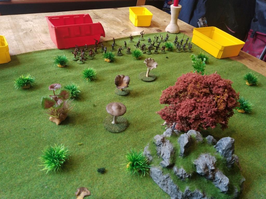 Défense de la forêt enchantée Img_2120