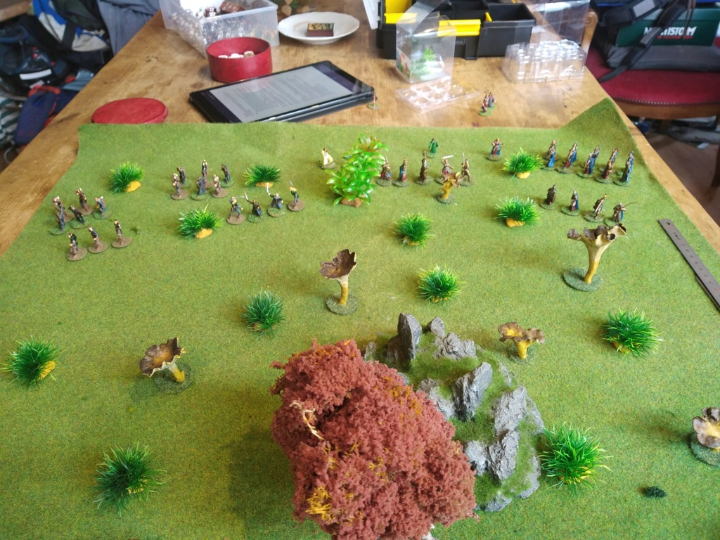 Défense de la forêt enchantée Img_2121