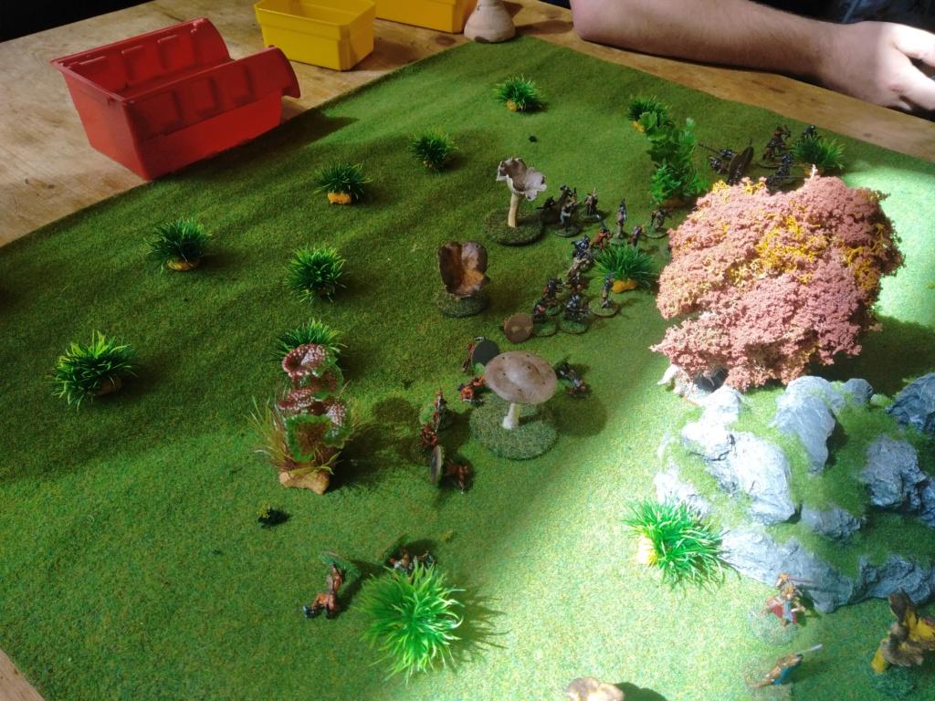 Défense de la forêt enchantée Img_2123