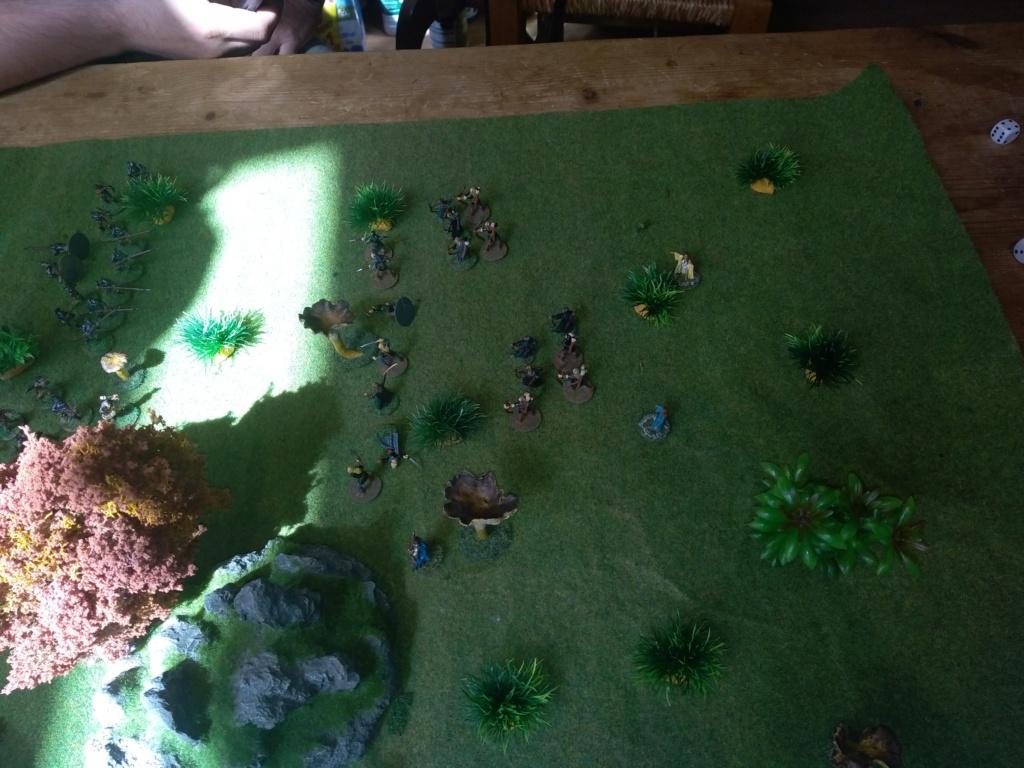 Défense de la forêt enchantée Img_2124