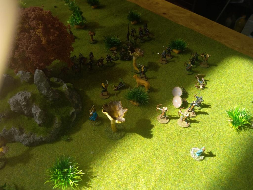 Défense de la forêt enchantée Img_2126