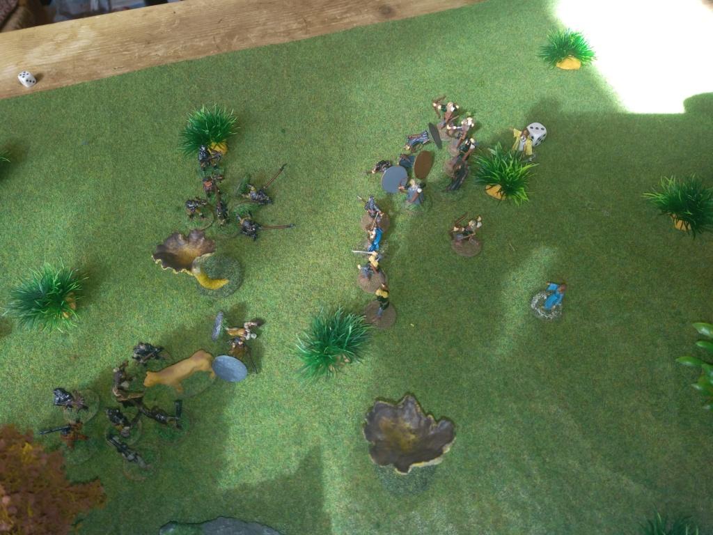 Défense de la forêt enchantée Img_2127