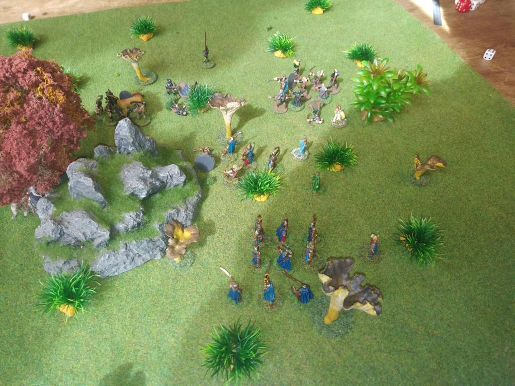Défense de la forêt enchantée Img_2129