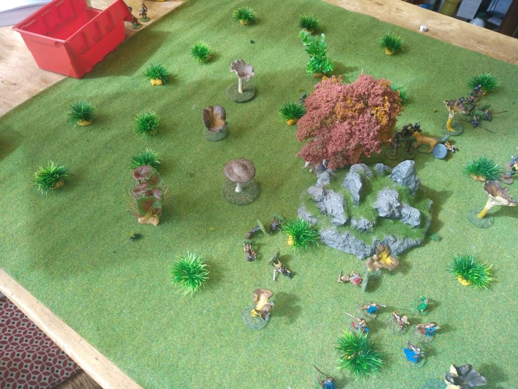 Défense de la forêt enchantée Img_2130
