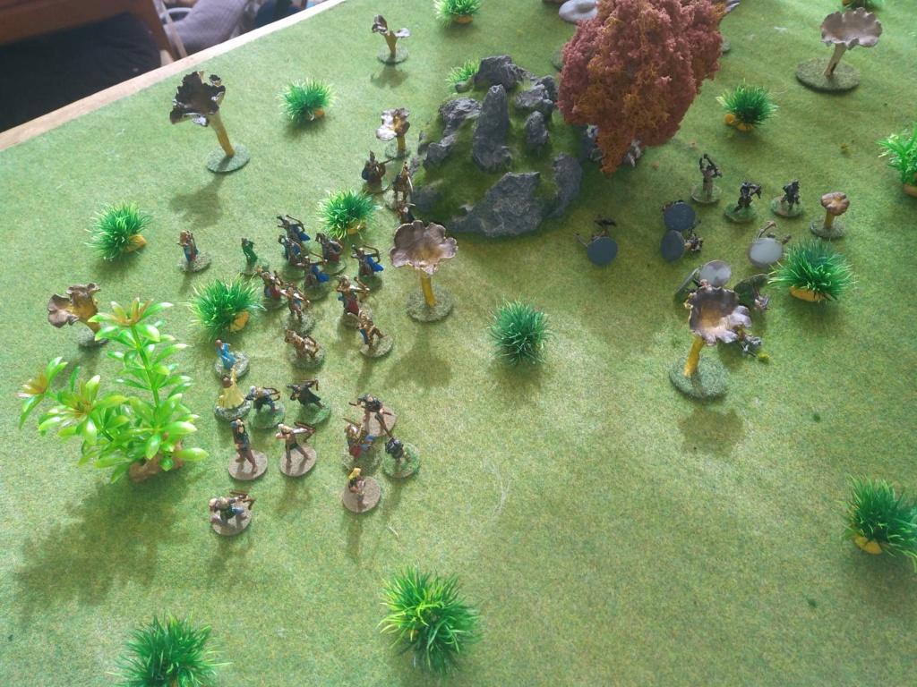 Défense de la forêt enchantée Img_2131
