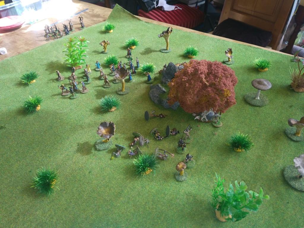 Défense de la forêt enchantée Img_2132