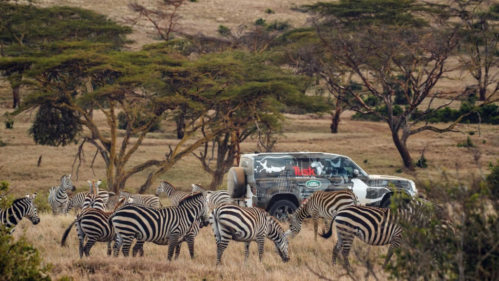 Novo Land Rover Defender já rastreia leões na África 2020-l48
