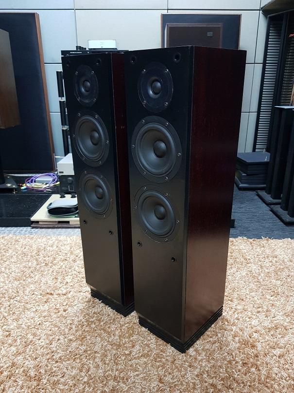 Ditton Carina DC6 Rosewood Floor standing loudspeakers (Sold) 20210212