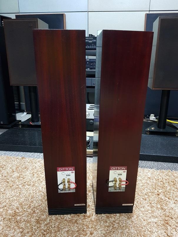 Ditton Carina DC6 Rosewood Floor standing loudspeakers (Sold) 20210214