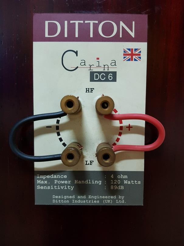 Ditton Carina DC6 Rosewood Floor standing loudspeakers (Sold) 20210216