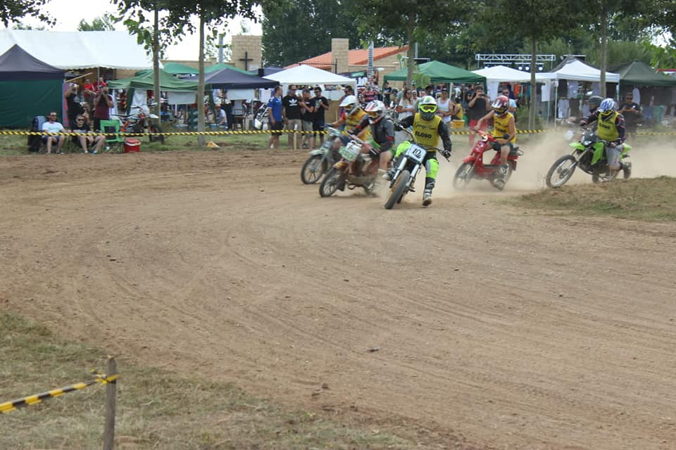 Concentracion Dusty moped insane rodeo 310