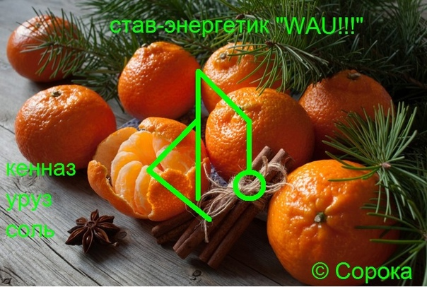 "Став- энергетик ""WAU!!!""  Автор Сорока  16329810"