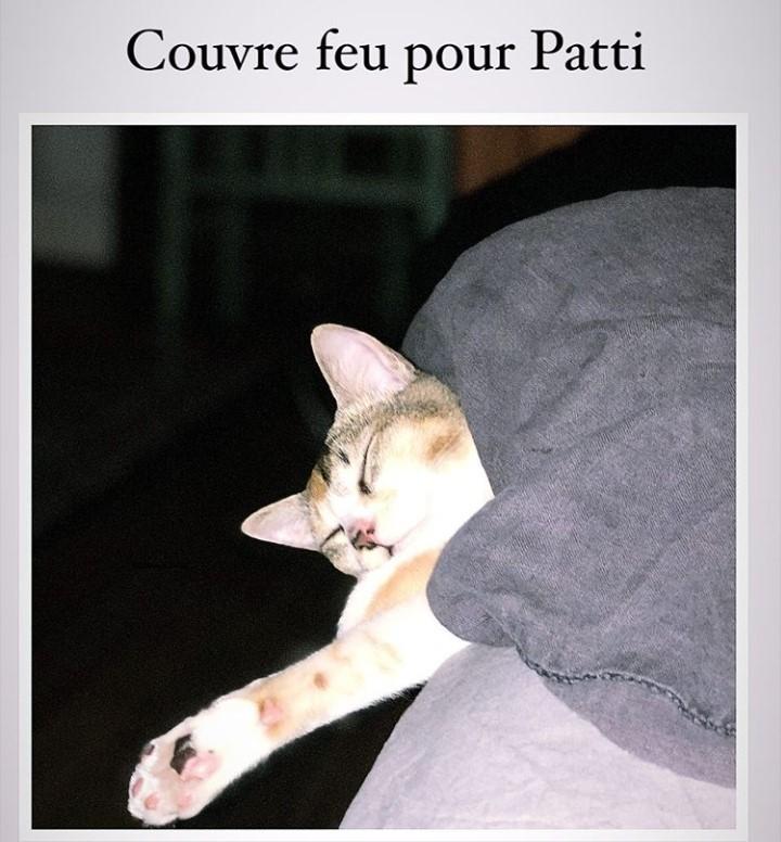 PATTI (Kea) Screen41