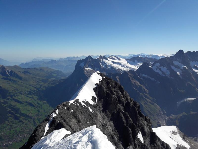 Eiger par l'arête Mittellegi 1610