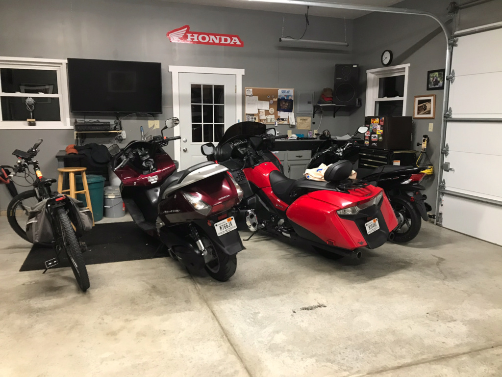 From Goldwing to Silverwing 91114e10