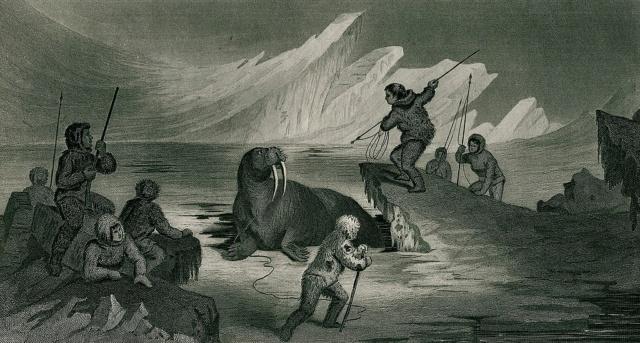 Anomalies du cercle polaire arctique : aperçu archéologique sous le pergélisol 1024px10
