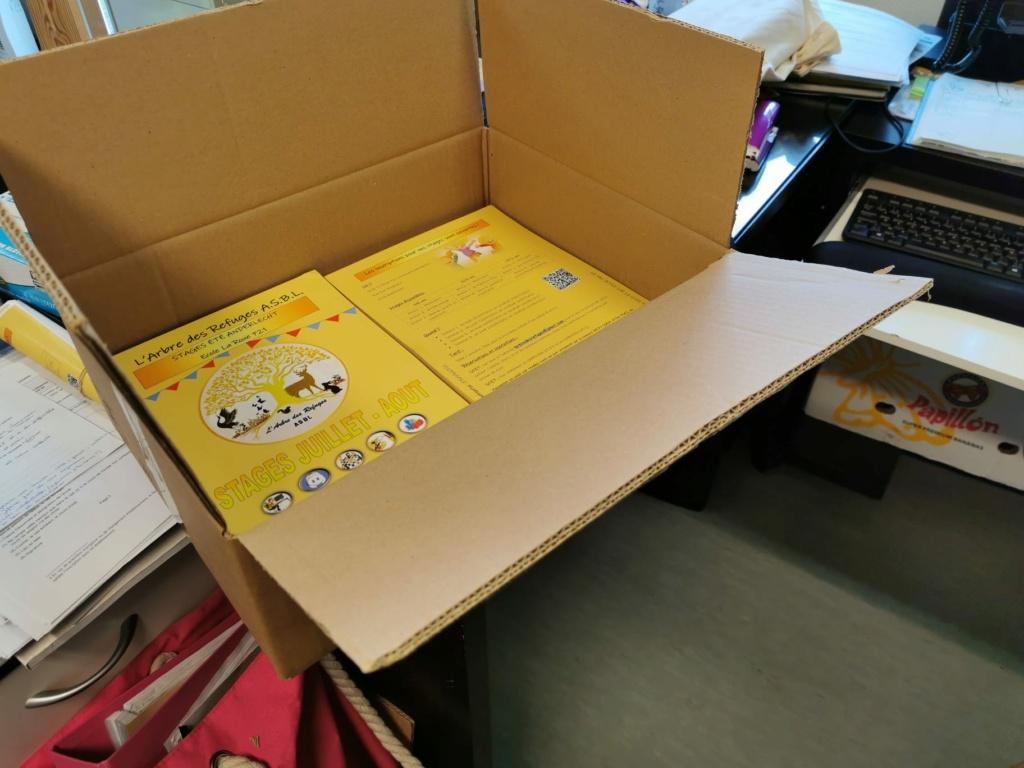 ASBL L'Arbre des Refuges: Présentation du Projet  Img-2011