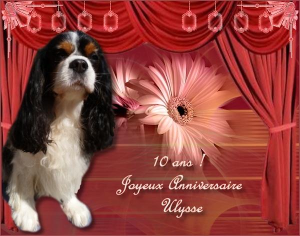 Le blog des Trésors d'Huguette.H Image111