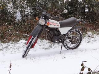DTMX 125cc Membres / Modèles endurisés Dsc04710