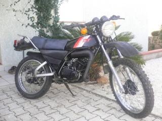 DTMX 125cc Membres / Mod. 1981 P1060710