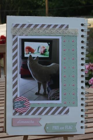 My family Diary - Liliscrap33 _ MAJ le 28/09 Sem_211