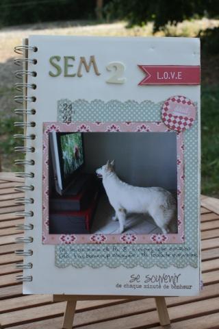 My family Diary - Liliscrap33 _ MAJ le 28/09 Sem_2_11